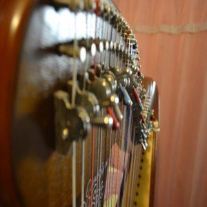 experience associative choupboss harpe