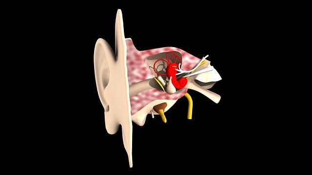 dangers auditifs liés aux loisirs oditif chouponline oreille