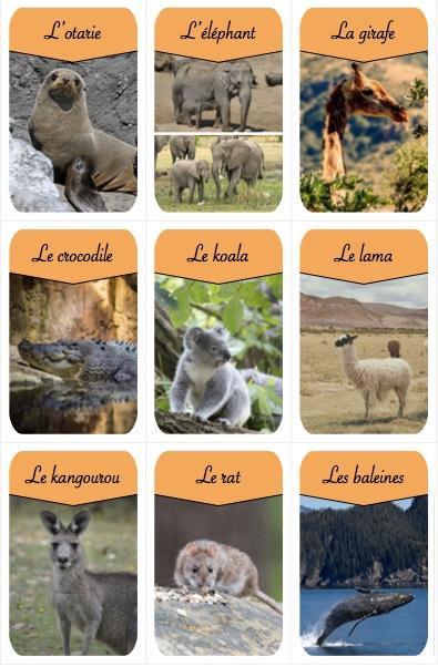 créer un jeu de société militant pour la protection animale chouponline AEIFS carte jeu 2