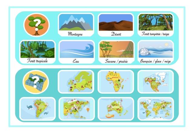 créer un jeu de société militant pour la protection animale chouponline AEIFS planche milieu jeu 2