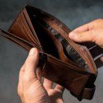 revenus d'une animatrice indépendante tarifs à l'année chouponline purse-3548021__340