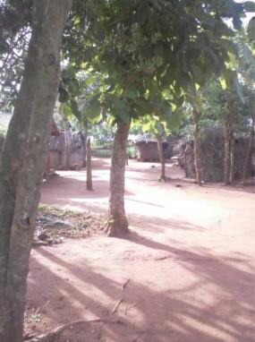 l'eau au benin puits aménagés puits non aménagé kposodo chouponline route d'acces au village