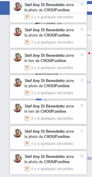 communauté choupy site chouponline