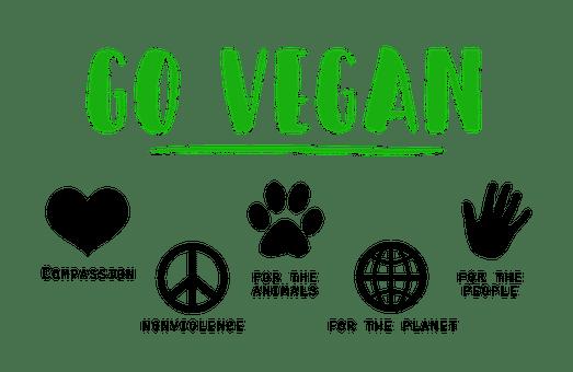 Devenir bénévole dans une association pour environnement chouponline devenir vegan