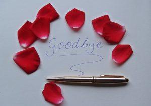 augmenter sa notoriété Sophie dolce chouponline goodbye