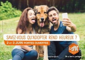 Manque de communication en association canine chouponline adopter rend heureux