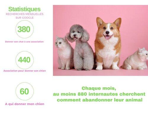 association_animaux_abandonnés_abandon_animaux_de_compagnie_chouponline_infographie_v3